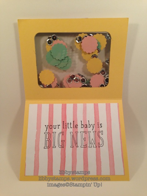libbystamps, stampin up, Big News, Birthday Bouquet DSP, Project Life Cards & Labels Framelits, shaker card, CCMC408