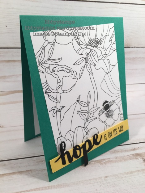 libbystamps, stampin up, Sunshine Sayings, Sunshine Wishes Thinlits, Inside The Lines DSP, SAB, Sale-A-Bration, Sale-a-bration 2017, Hope