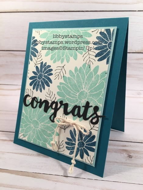 libbystamps, stampin up, Special Reason, Sunshine Wishes Thinlits, WWC#109, Occasions 2017