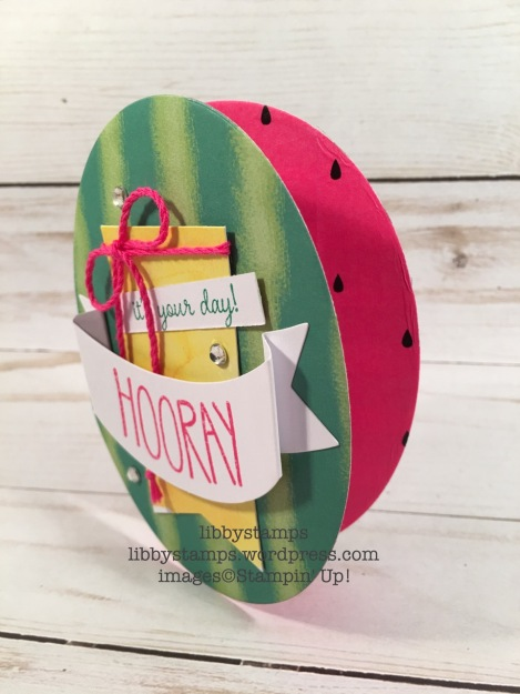 libbystamps, stampin up, Paper Pumpkin, One in a Melon, June 2017, watermelon